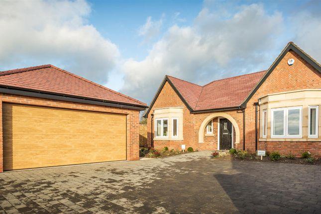 Thumbnail Detached bungalow for sale in Montpelier, Quarndon, Derby