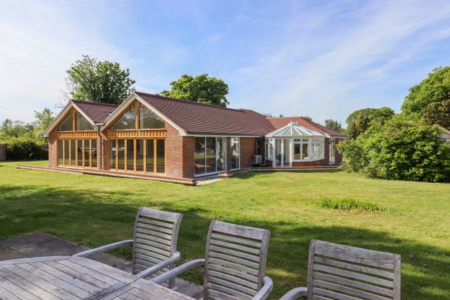 Thumbnail Detached bungalow for sale in Petersfield Road, Ropley, Alresford