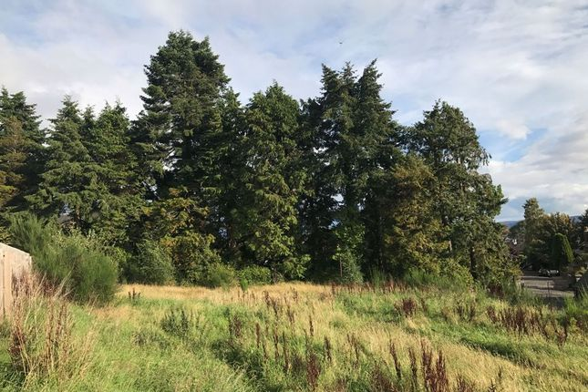 Thumbnail Land for sale in Ferntower Road, Crieff