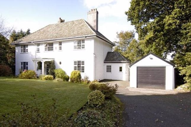Thumbnail Detached house to rent in Tavistock Rd, Plymouth, Devon