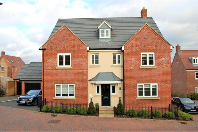 Thumbnail Detached house to rent in Avocet Road, Hemel Hempstead