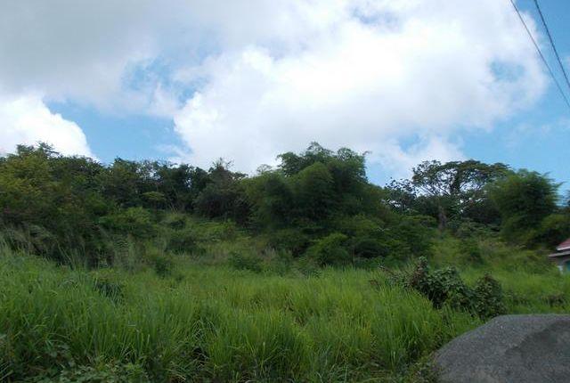 Land for sale in Morant Bay, Saint Thomas, Jamaica