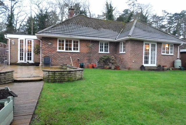 Thumbnail Detached bungalow for sale in Hardwick Lane, Bury St. Edmunds