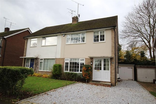 Thumbnail Semi-detached house to rent in Hermitage Drive, Twyford, Reading