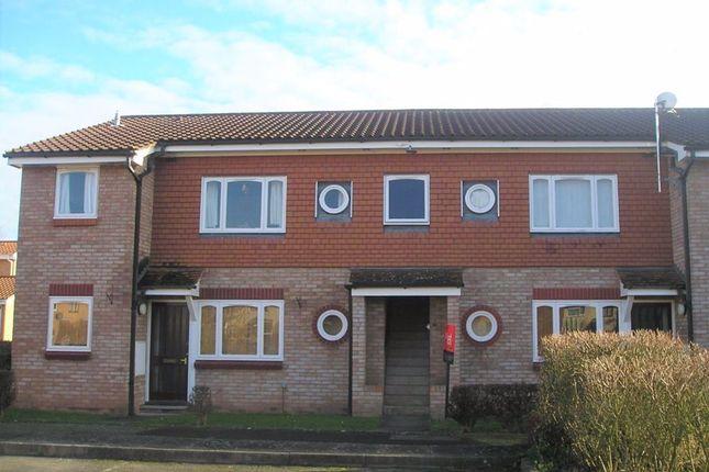 Studio to rent in Fakenham Drive, Bobblestock, Hereford HR4