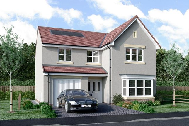 "Thumbnail Detached house for sale in ""Mackie"" at Murieston Road, Murieston, Livingston"