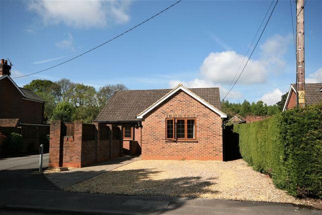 Thumbnail Detached house to rent in Back Lane, Bucks Horn Oak, Farnham