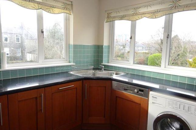 Kitchen Windows With Open Views