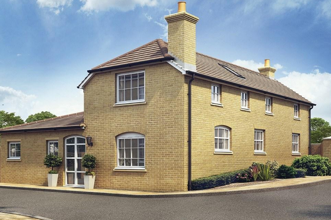 Thumbnail Detached house for sale in Truro Place, Green Lanes, Palmers Green, London