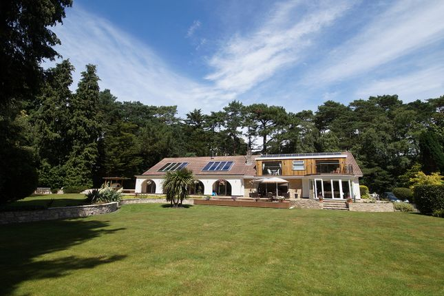 Thumbnail Detached house to rent in Branksome Park, Poole