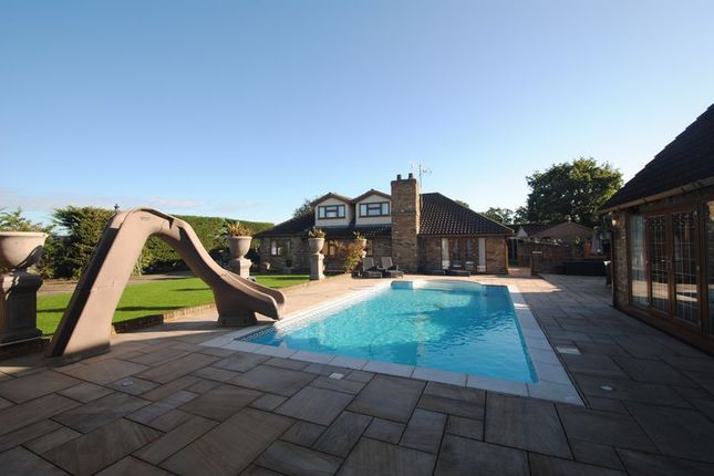 Thumbnail Detached bungalow for sale in The Chase, Wickford