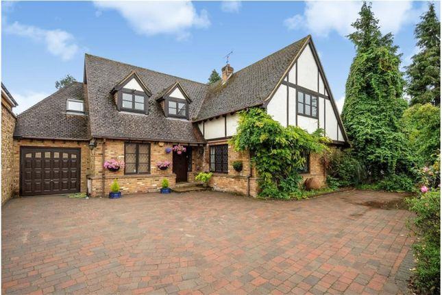 Thumbnail Detached house for sale in The Avenue, Wraysbury