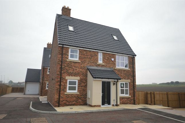 Thumbnail Detached house to rent in Thill Stone Mews, Whitburn, Sunderland, Tyne And Wear