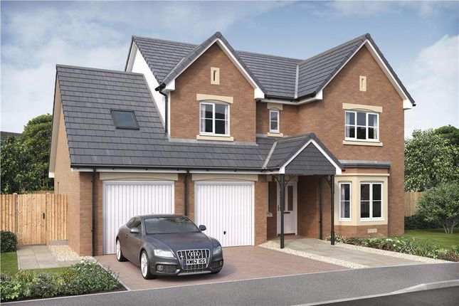 "Thumbnail Detached house for sale in ""Humber"" at Raeswood Drive, Glasgow"