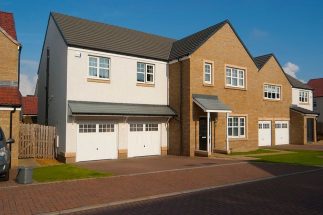 Thumbnail Detached house for sale in Rowling Crescent, Falkirk