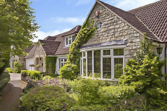 Thumbnail Detached house for sale in Hook, Swindon