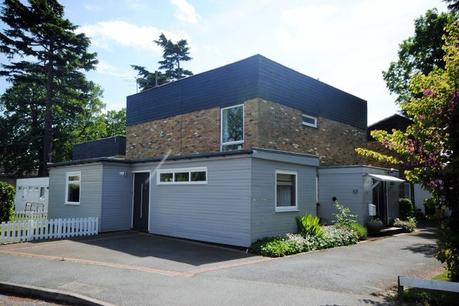 Thumbnail Detached house for sale in Homefield Close, Chelmsford