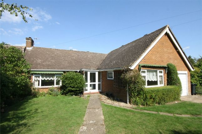 Thumbnail Detached bungalow for sale in The Grove, Bexhill-On-Sea