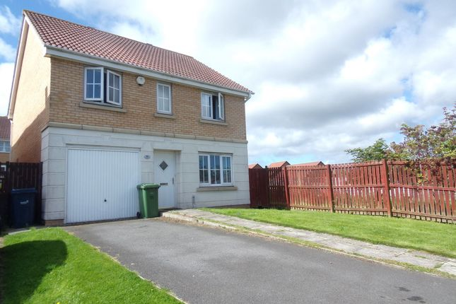 Thumbnail Detached house for sale in Churchside Gardens, Easington Lane, Houghton Le Spring