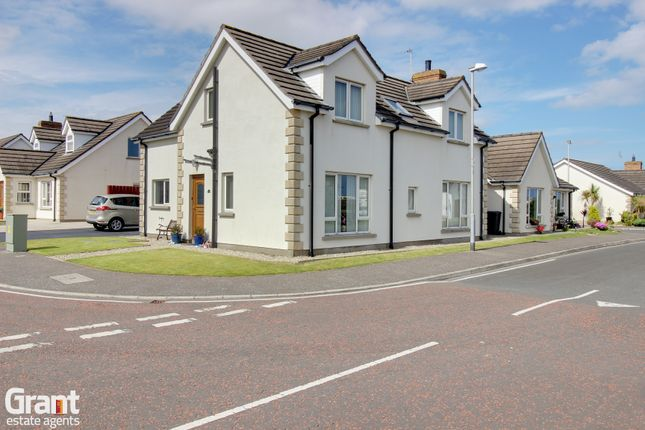 Thumbnail Detached house for sale in Ringbuoy Cove, Cloughey
