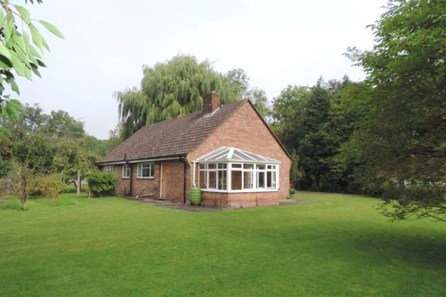 Thumbnail Detached bungalow to rent in Oxford Road, Frilford, Abingdon