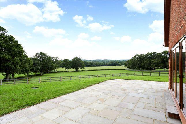 Picture No. 09 of Ridgelands Farm, Kent Street, Wineham, Nr Cowfold RH13