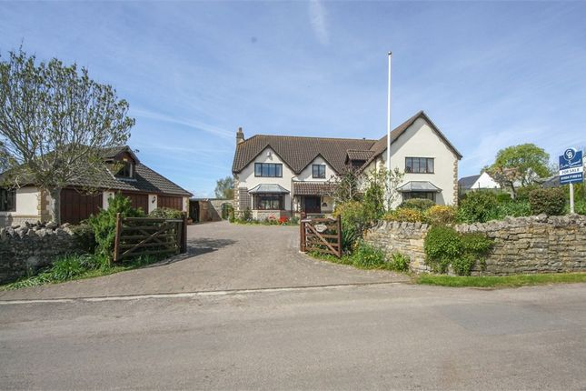 Thumbnail Detached house for sale in Manna House, Redmans Hill, Blackford, Wedmore, Somerset