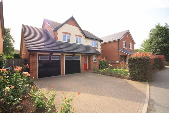 Thumbnail Detached house to rent in Cedar Grove, Nantwich