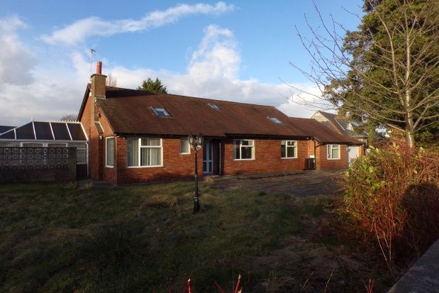 Thumbnail Detached bungalow to rent in Sharoe Green Lane, Fulwood, Preston