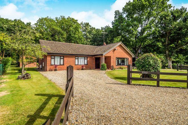 3 bed detached bungalow for sale in Bernard Close, High Kelling, Holt