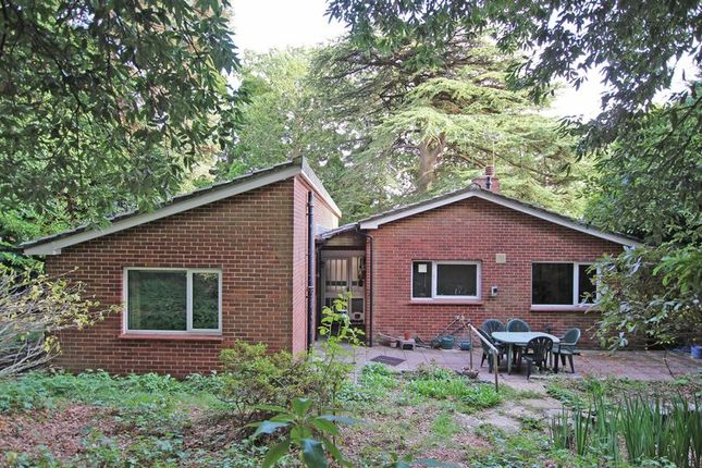 Thumbnail Detached bungalow for sale in Bassett Green Drive, Southampton
