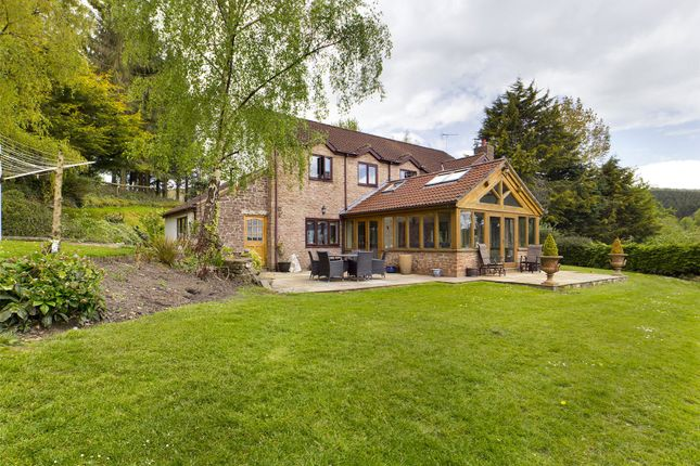Thumbnail Detached house for sale in Popes Hill, Newnham, Gloucestershire