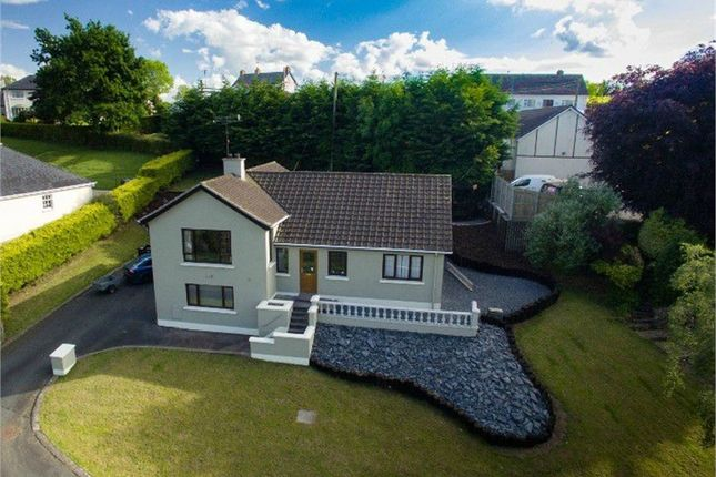 Thumbnail Detached house for sale in Caledon Road, Aughnacloy, County Tyrone