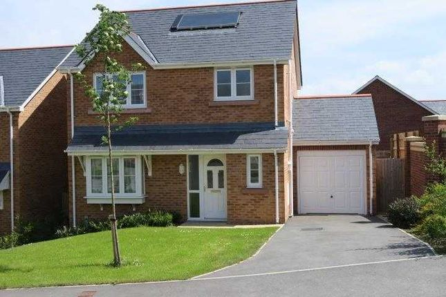 Thumbnail Detached house to rent in Llys Adda, Bangor