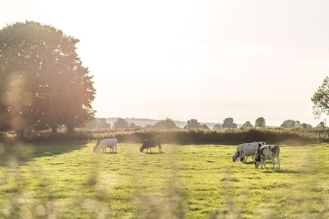Image Of The Elsenham Hr