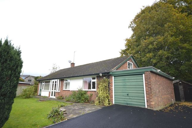 Thumbnail Bungalow to rent in Boot Street, Whittington, Oswestry