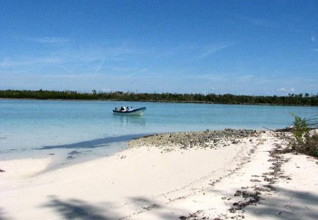Picture No. 07 of Sweetings Cay, East Grand Bahama, Bahamas
