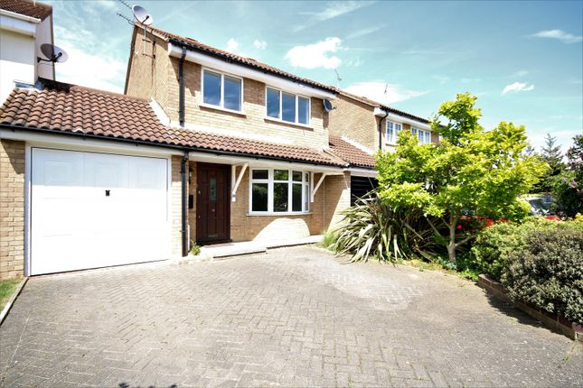 Thumbnail Property to rent in Martingale Drive, Chelmsford