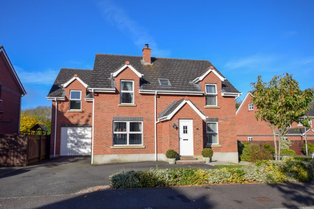 Thumbnail Detached house for sale in Greenvale Grove, Antrim
