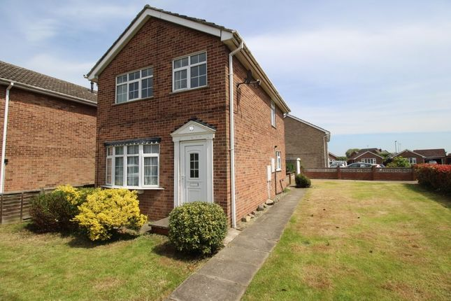 Thumbnail Detached house to rent in Langrick Avenue, Howden, Goole