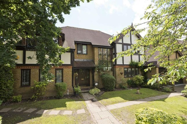 Thumbnail Detached house to rent in Icklingham Gate, Cobham