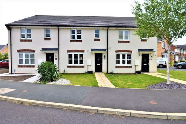 Thumbnail Terraced house for sale in Whitehead Drive, Wrexham