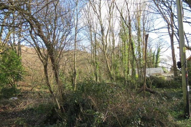 Img_9622 of Lower Tregongeeves Lane, Polgooth, Polgooth PL26