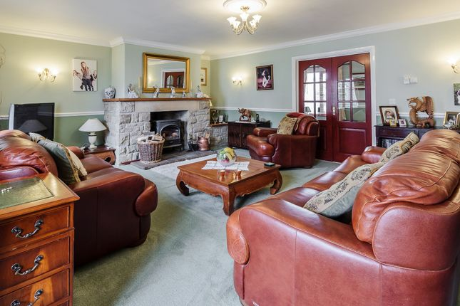Thumbnail Detached house for sale in Springfield, Longhoughton, Alnwick
