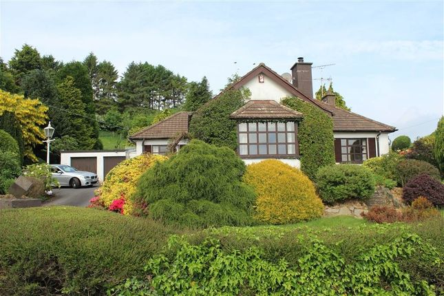 Thumbnail Bungalow for sale in 59 Newry Road, Poyntzpass