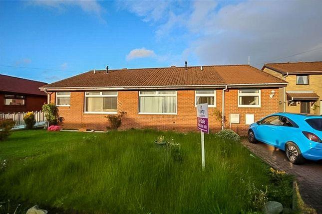 Thumbnail Bungalow to rent in Elm Park, Blackburn, Bathgate