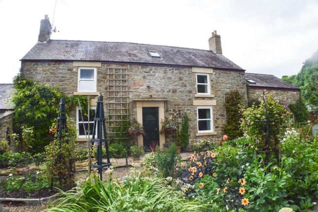 Thumbnail Detached house for sale in Kingshaw Green, Hexham