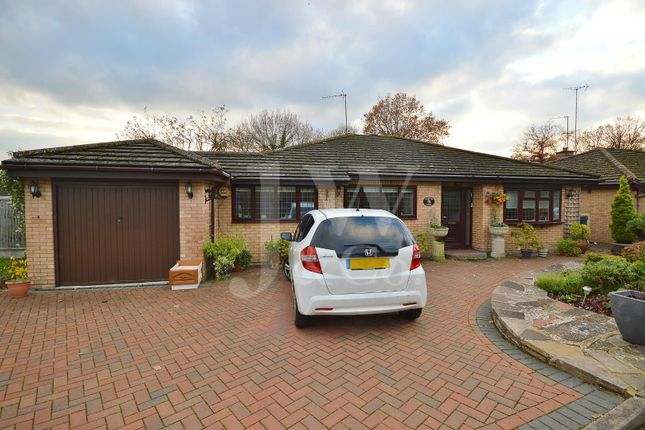 Thumbnail Detached bungalow for sale in Ferndene, Bricket Wood, St. Albans