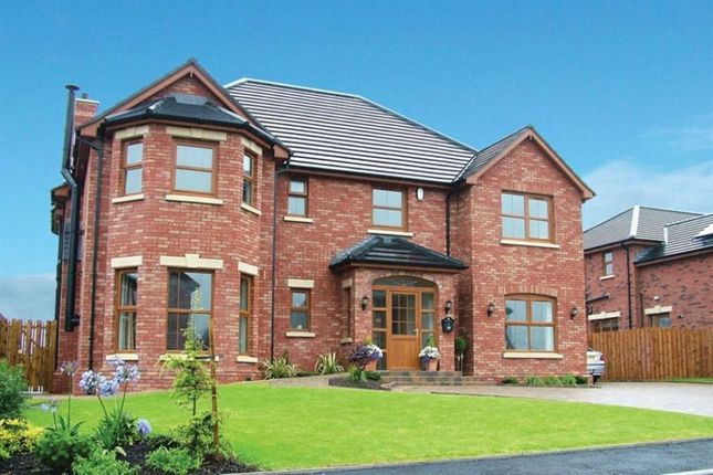 Thumbnail Detached house for sale in Ashfield Hall, Ballycrochan Road, Bangor