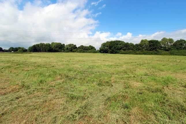 Thumbnail Land for sale in Ingoldfield Lane, Soberton, Southampton